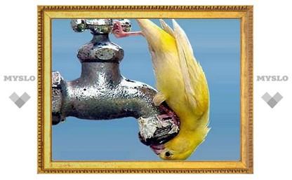 26 октября в части Тулы не будет воды