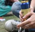 Тульские полицейские за неделю выявили более 500 фактов распития алкоголя в общественных местах
