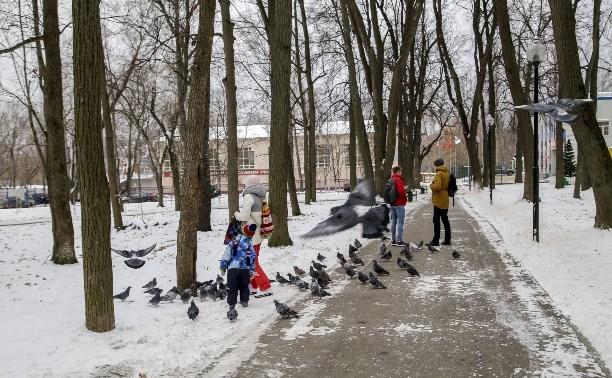 Алексей Дюмин: «Никакого строительства в Рогожинском парке Тулы не будет!»