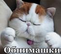 """В Туле проходит """"обнимашечный"""" флешмоб"""