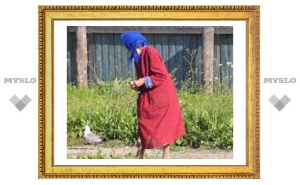 Московских бабушек грабил туляк