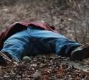 В алексинском лесу нашли труп мужчины без головы