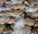 Более полутора тонн рыбной продукции забраковал Роспотребнадзор в Тульской области