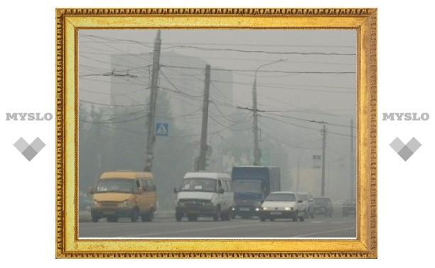 Высокое содержание угарного газа в смоге не повредило тулякам