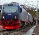 Под Щёкино скоростной поезд сбил пьяного мужчину