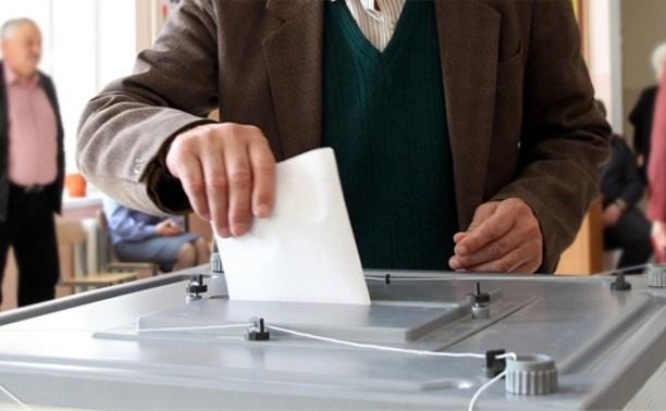 Туляки смогут досрочно проголосовать на выборах губернатора