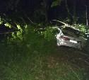 В Тульской области автомобиль «Киа» врезался в дерево