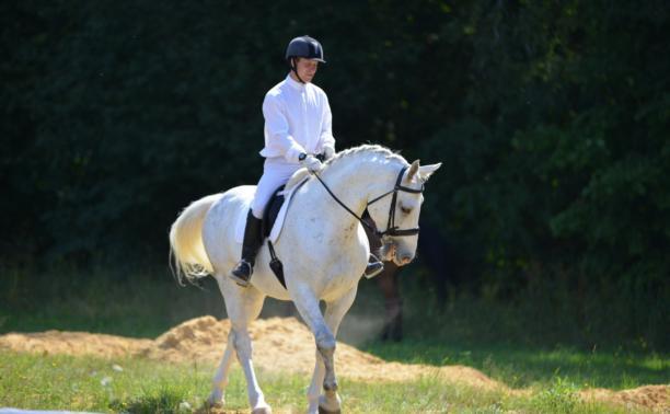 В Ясной Поляне завершились конно-спортивные соревнования