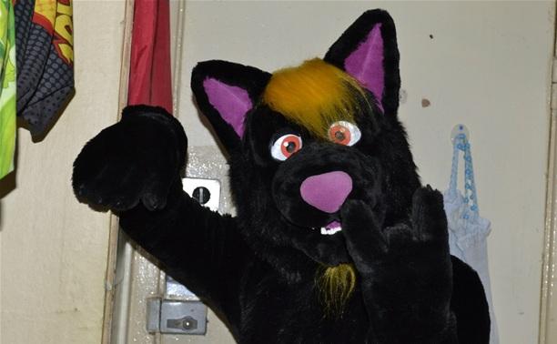8 Марта в Центральном парке можно будет обнять волка