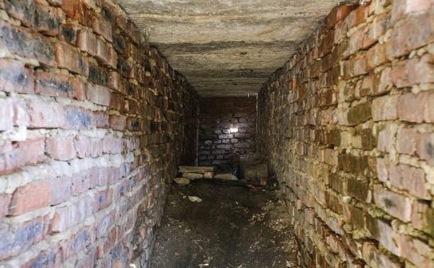 Под Тулой дети в подвале пытали 5-летнюю девочку