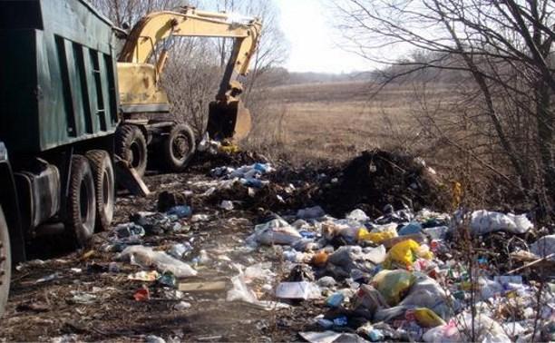 На улицах Тулы обнаружены 16 несанкционированных свалок