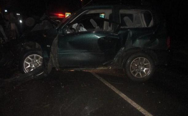 Водитель «Сузуки» не справился с управлением: пострадал пассажир
