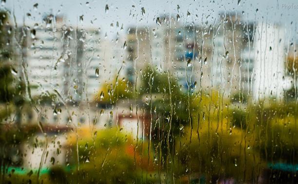 Погода в Туле 30 июля: дожди, грозы, ветер и жара