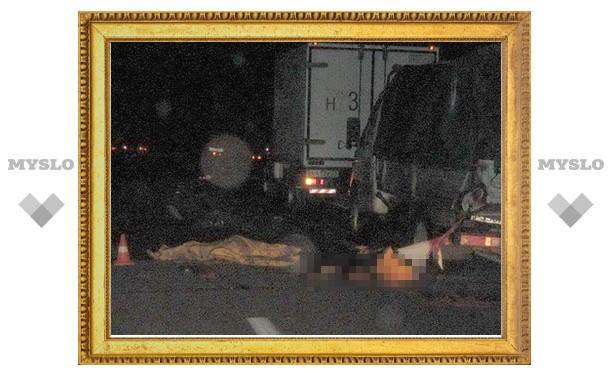 Под Тулой грузовик разорвал стоявшего на дороге мужчину