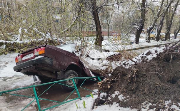 На ул. Гастелло в Туле упавшие деревья и столб переломили ВАЗ и повредили еще три авто