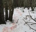 Калужане незаконно застрелили лося в охотхозяйстве Суворовского района