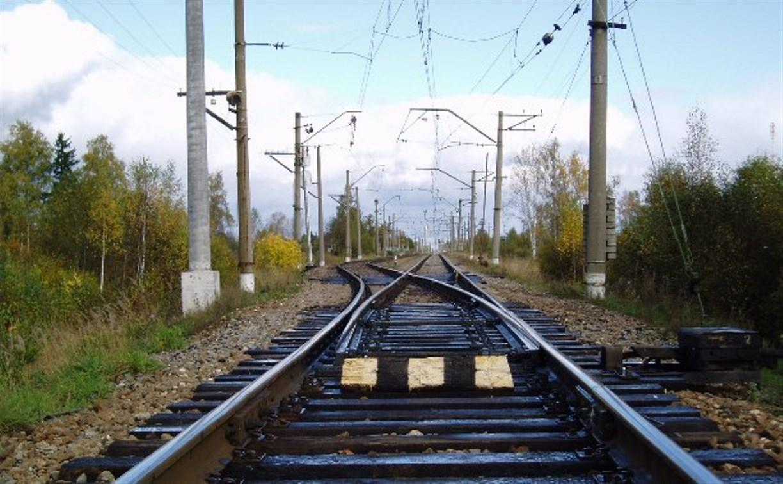 В Тульской области зафиксировано 173 случая краж на железной дороге