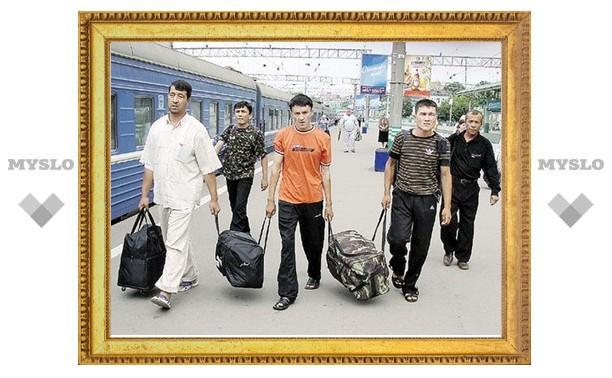 За полгода в Тульскую область приехало более 47 тысяч мигрантов