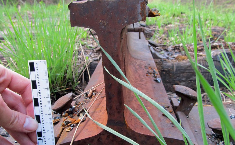 В Туле грибник наткнулся на железную дорогу и стащил рельсы