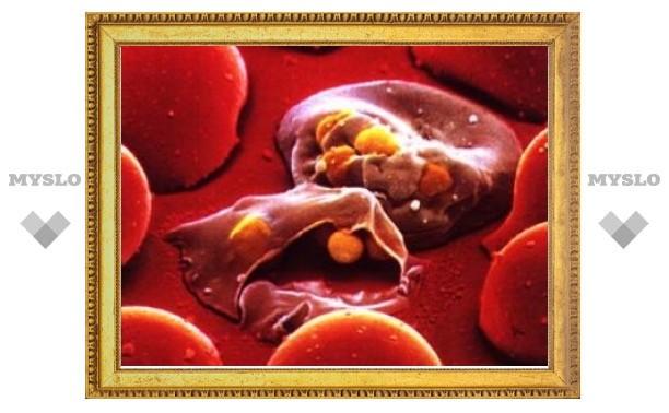 """Гейтс выделил миллион долларов на """"микроволновку"""" для лечения малярии"""