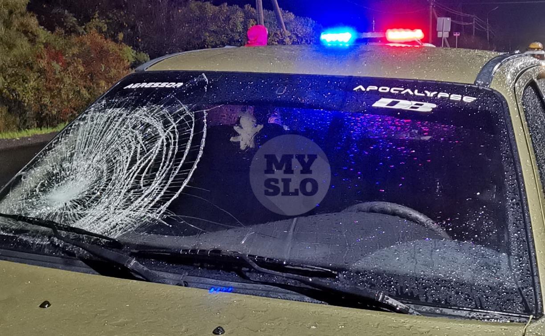 На М-2 в Туле сбили бегавшего по трассе пешехода