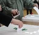 Выборы в Тульской области проходят на 19 избирательных участках