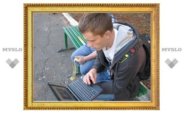 Весной в тульских парках появится бесплатный Интернет