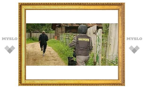 """В Туле ищут """"дачного"""" грабителя"""