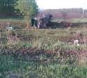 В Тульской области «Опель» вылетел в кювет: погиб водитель