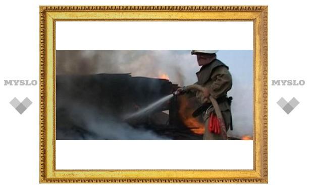 Под Тулой горят заброшенные дома