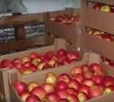 На тульской складской базе нашли 3,5 тонны санкционных фруктов и овощей