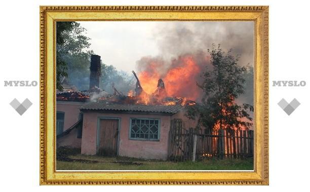 Атипичная жара чуть не сожгла киреевскую деревню