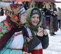 Проводить зиму на набережную Упы пришли более пяти тысяч туляков