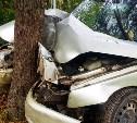 В Тульской области водитель «десятки» врезался в дерево