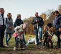 В Ясной Поляне посадили яблони