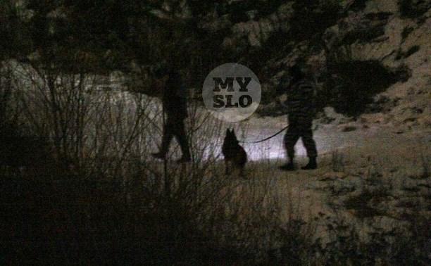 Подробности задержания педофила в Туле: преступник прятался от полиции в туалете