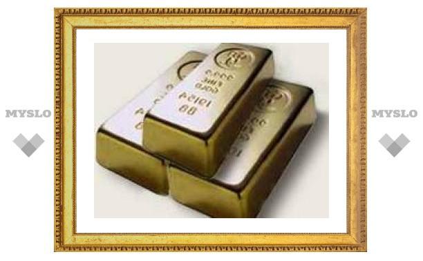 Туляки могут хранить сбережения в золотых слитках