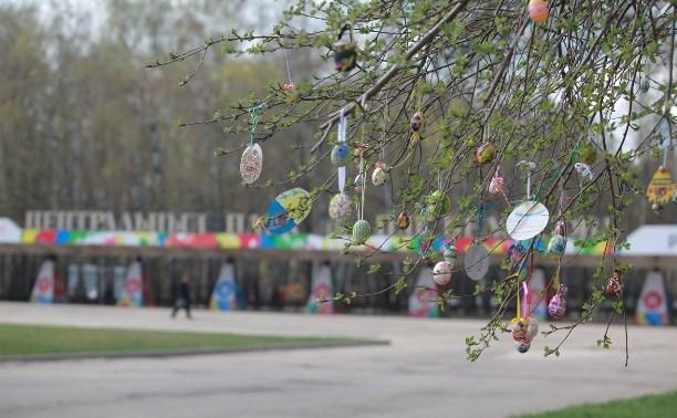 Туляков приглашают принять участие в акции «Нарядим Пасхальное дерево вместе!»