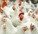Тульскую птицефабрику оштрафовали на 100 тысяч рублей