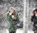 Погода в Туле 14 января: снегопад и порывистый ветер