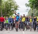В Туле прошел велопарад. Фоторепортаж