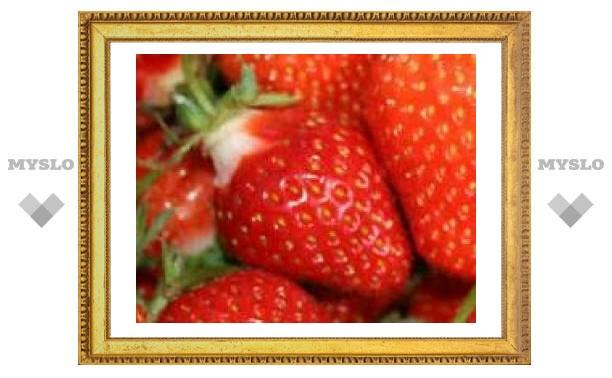 14 января: ночь звездиста - лето ягодисто
