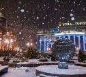 Синоптики рассказали о погоде в Туле в Рождественскую ночь