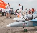 Что ждет зрителей на фестивале радиоуправляемых авиамоделей «Тульские крылья»