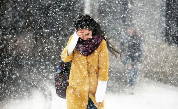 Погода в Туле 6 февраля: небольшой снег, порывистый ветер, до -6