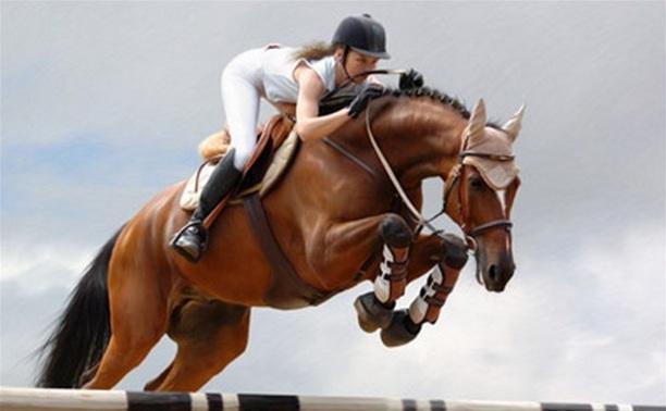 В Центральном парке состоятся конные соревнования