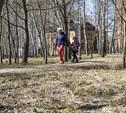 Березовую рощу в Пролетарском районе благоустроят на 7,7 млн рублей