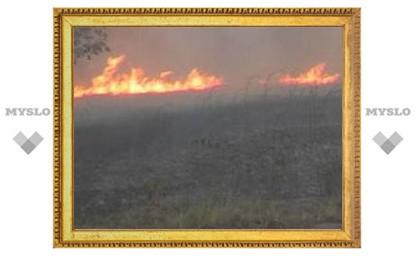 Под Тулой сгорело 8 дач