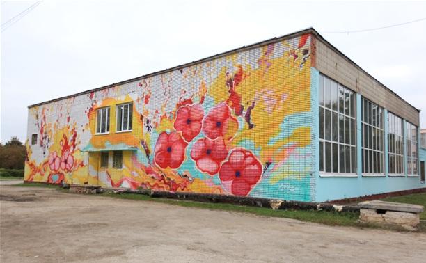 С новыми граффити Тула стала ярче!