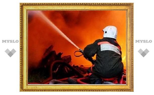 В Тульской области при пожаре погиб мужчина